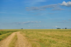 Road in field and cloudy sky Stock Photography