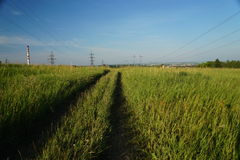 Road in the field Stock Photography