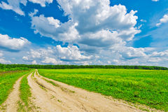 Road by the field. Stock Photo