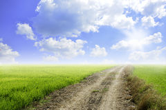 The road field Royalty Free Stock Image
