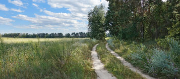 The road between the field and the forest on a summer day Royalty Free Stock Photo