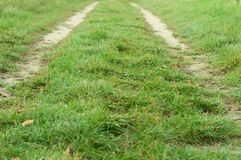 Road in the field with green grass Royalty Free Stock Photos