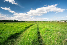 Road in a field with green grass under a blue sky Royalty Free Stock Images