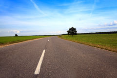 Road  through the field Royalty Free Stock Image