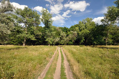 Road in the field Royalty Free Stock Photo