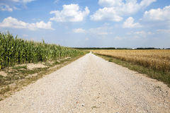 Road in a field Stock Image