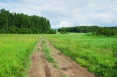 Road in field Stock Photo