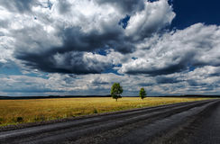 Road field sky trees Stock Image