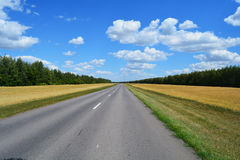 The road through the field royalty free stock images