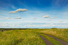 Road in the field. Royalty Free Stock Photo