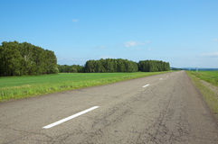 Road, field and tree Royalty Free Stock Image