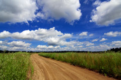 Road through the field under beautiful sky in the clouds Stock Photos