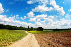 Road in field under blue sky Royalty Free Stock Image
