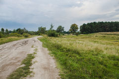 Road in field Stock Image