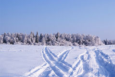Road through the field in winter Stock Image