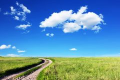 Road in fields. At sunny day Royalty Free Stock Image