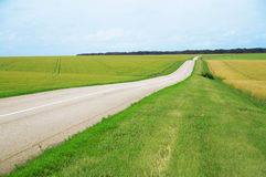 Road and fields Royalty Free Stock Image