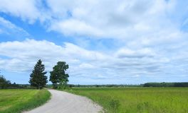 Road , fields and beautiful cloudy sky, Lithuania Royalty Free Stock Image
