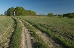 A road among fields. In early spring with a white cross and a clump of trees at the end Royalty Free Stock Image