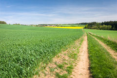 Road, fields, forest, village and blue sky - spring countryside Stock Image