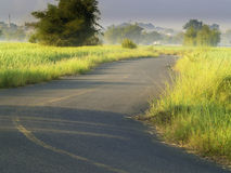 Road fields and Sunrise Royalty Free Stock Photo