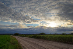 Road through the fields at sunset Royalty Free Stock Image