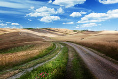 Road between the Fields of Tuscany Royalty Free Stock Photography