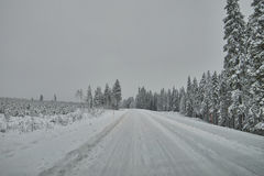 Road in Finland after snow blizzard Stock Images