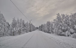 Road in Finland after snow blizzard Royalty Free Stock Photo