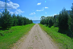 The road between fir-trees to the coast of Ivankovskoye Reservoir at eco-hotel Vetochka Stock Image