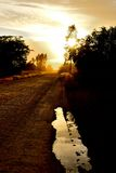 Road Flare. Dirt Road at sun rise with sun flare back ground, tree sillouette and water reflection Royalty Free Stock Photo