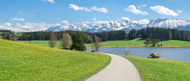 Road and flower meadow at lake and snow covered mountains. Stock Photo