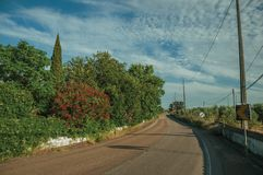 Road and flowered trees in a farm near Elvas. Countryside road on sunset and flowered green trees in a small farm near Elvas. A gracious star-shaped fortress stock images