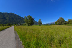 Road through the flowery meadow. In spring Stock Image