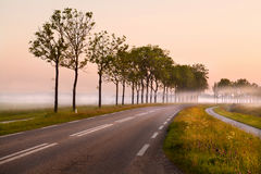 Road in the fog Stock Images