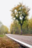 Road with fog Royalty Free Stock Photo