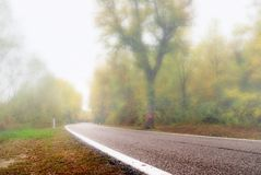 Road with fog Stock Photography