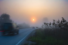 Road in fog with cars Royalty Free Stock Photography