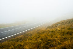 Road in the fog Stock Photography