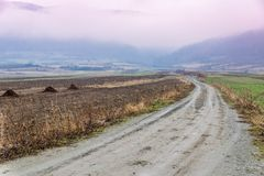 Road into fog landscape. Misty autumn foggy morning to the mountains landscape with pink clouds and fog Stock Photos