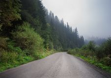 Road with fog in mountains, with dense pine forest on the rocky slopes of the mountains. Idea for outdoor activities, tourism, tra. Road with fog in mountains royalty free stock photo