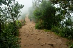 Road in fog at the Top station in Munnar Stock Photo