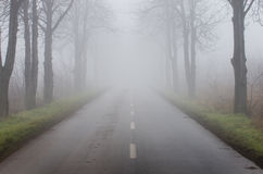 Road on foggy day Royalty Free Stock Photo