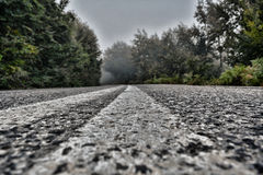 Road. In a foggy forest, greece royalty free stock image