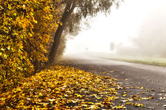 Road on a foggy morning Stock Image