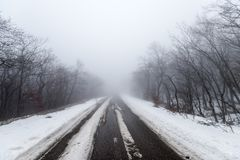 Road in foggy snowy forest. Empty road in foggy snowy forest Royalty Free Stock Images