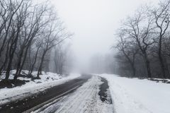 Road in foggy snowy forest. Empty road in foggy snowy forest Royalty Free Stock Photos