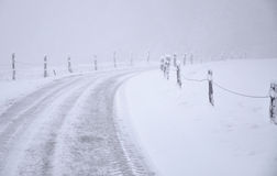 Road into Foggy Winter Royalty Free Stock Photography