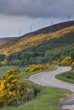 Road following North Sea coast near Westgarty Burn, Scotland. Stock Photo
