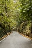 Road in Forest. Asphalt road in the forest. Photo taken in Therisso Gorge, Crete Royalty Free Stock Images